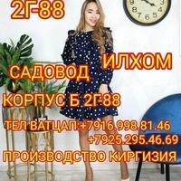 Ilhom Aliev (Садовод 2Г-88) - женская одежда от продовца