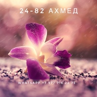Ахмед Аминов (Садовод 24-82) - женская одежда от продавца